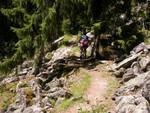 Stubai, sentiero nel bosco